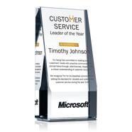 Customer Service Leader of the Year Award