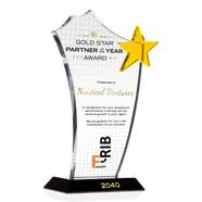 Crystal Gold Star Best Dealer/Distributor Award Plaque